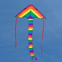 HQ Ecoline Radiant Rainbow Single Line Kite